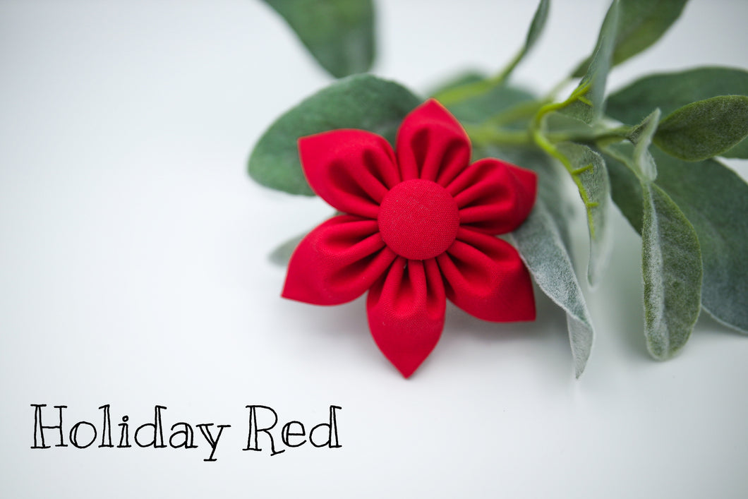 Holiday Red Daisy