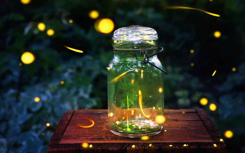 glowing fireflies in a jar