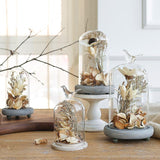Enchanted Moments Dried Flower Terrarium