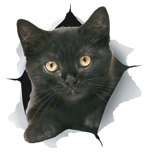 Black Kitten Sticker Decals - 2 Pack - Exclusive