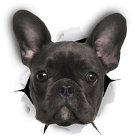 Black French Bulldog Sticker Decals - 2 Pack - Exclusive