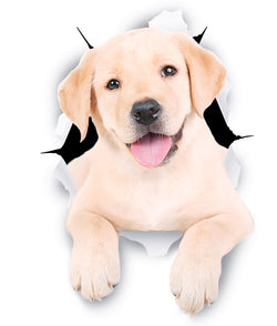 Cute White Labrador Sticker Decals - 2 Pack - Exclusive