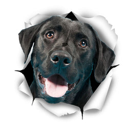 Cute Black Labrador Sticker Decals - 2 Pack - Exclusive