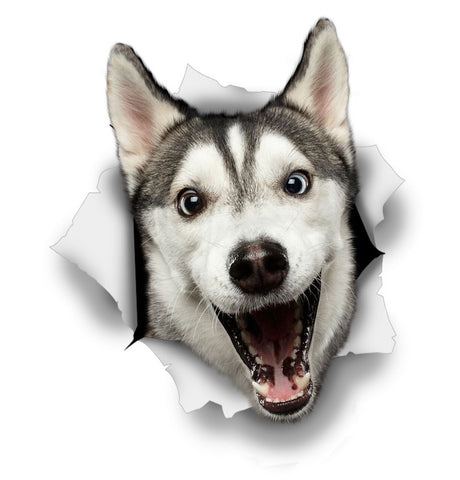 Happy Husky Sticker Decals - 2 Pack - Exclusive