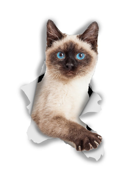 Breakout Siamese Sticker Decals - 2 Pack - Exclusive
