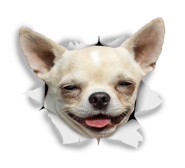 Happy Chihuahua Sticker Decals - 2 Pack - Exclusive