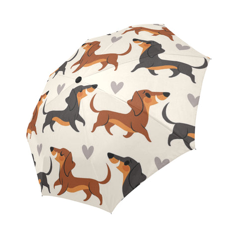 Image of Umbrella Dachshund Cute