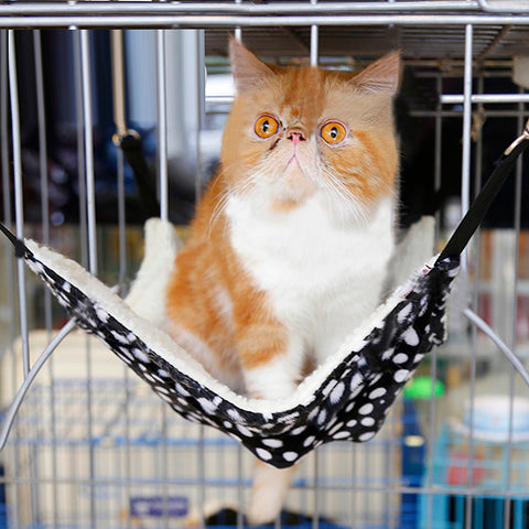 1pcs Cat Hanging Hammock  Comfortable and Soft Warm Cats Bed Pets Hanging Bed Hang On Designed Bed for Cats Accessories