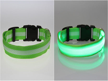 Glow LED Dog Pet Cat Flashing Light Up Nylon Collar Night Safety