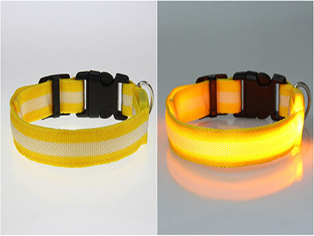 Image of Glow LED Dog Pet Cat Flashing Light Up Nylon Collar Night Safety