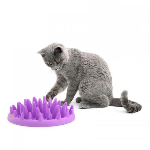 Image of Cat Bowl Food Plastic Single Hard Kitten Feeding Bowls For Pet Cat Rounded Slow Food Feed Non Slip Feeder Bowl Product For Gatos