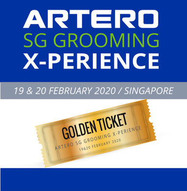 Gold Ticket - ARTERO Singapore