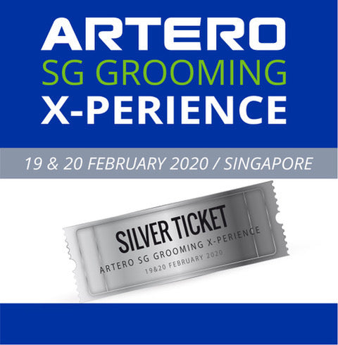 Silver Ticket - ARTERO Singapore