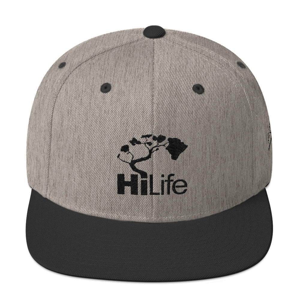 HiLife Hat Snapback Basics Dark