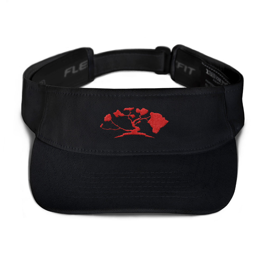 HiLife Visor Basics Red