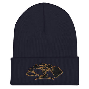 HiLife Hat Knit Beanie Arch