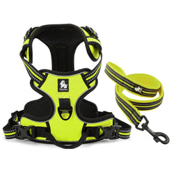 Premium Breathable Mesh Padded Nylon Harness With Matching Leash