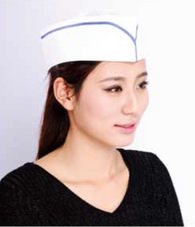 HAT - Forage Hat (Non Woven)