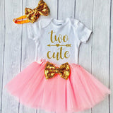 Two Cute, Second birthday outfit, 2nd Birthday, Pink and Gold Tutu Birthday Outfit, 2nd Birthday