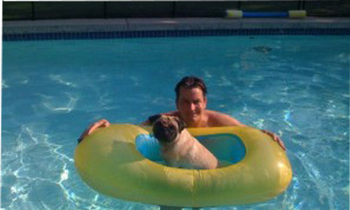 10 Celebrity Pug Owners