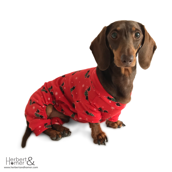 Christmas Hound Dog Pyjamas
