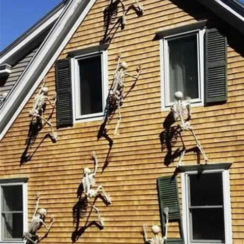 Human Skeleton Hanging Decoration - 36Bucks.com