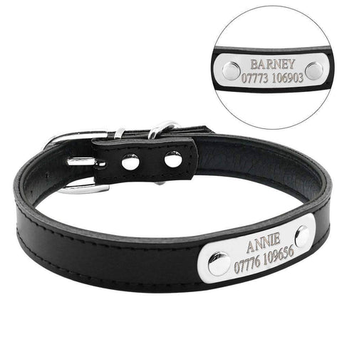PetGlow Personalized Leather Dog Collar - Small To Medium Dogs - 36Bucks.com
