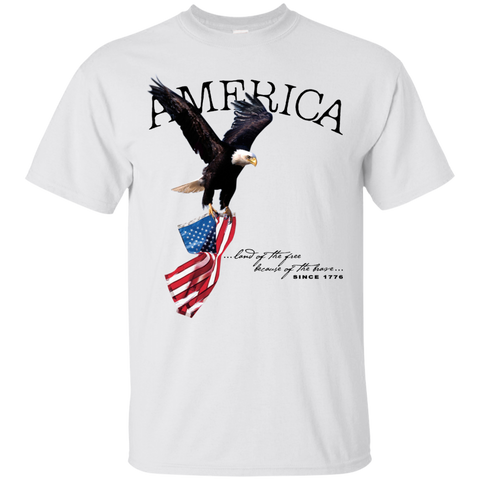 Land of the FREE because of the BRAVE (Unisex) T-shirt