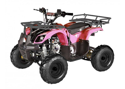 Gmx Mudder Jnr 125cc Farm Atv
