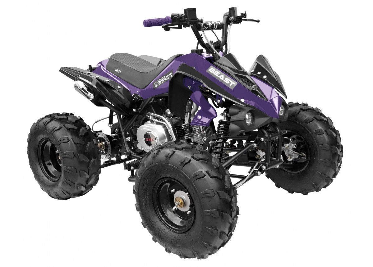 Gmx The Beast 125cc Sports Quad Bike