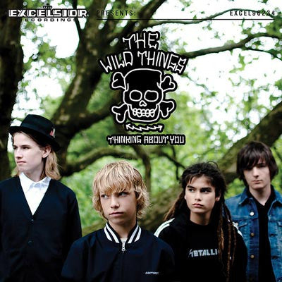 Wild Things - Thinking About You