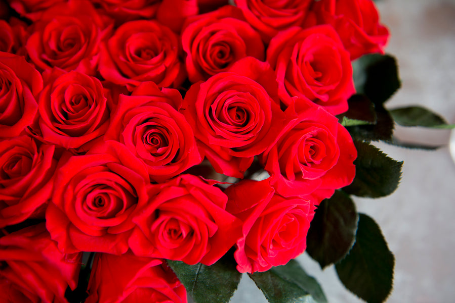 The Meaning, Symbolism and History of Red Roses