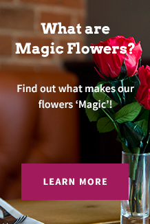 What Are Magic Flowers?