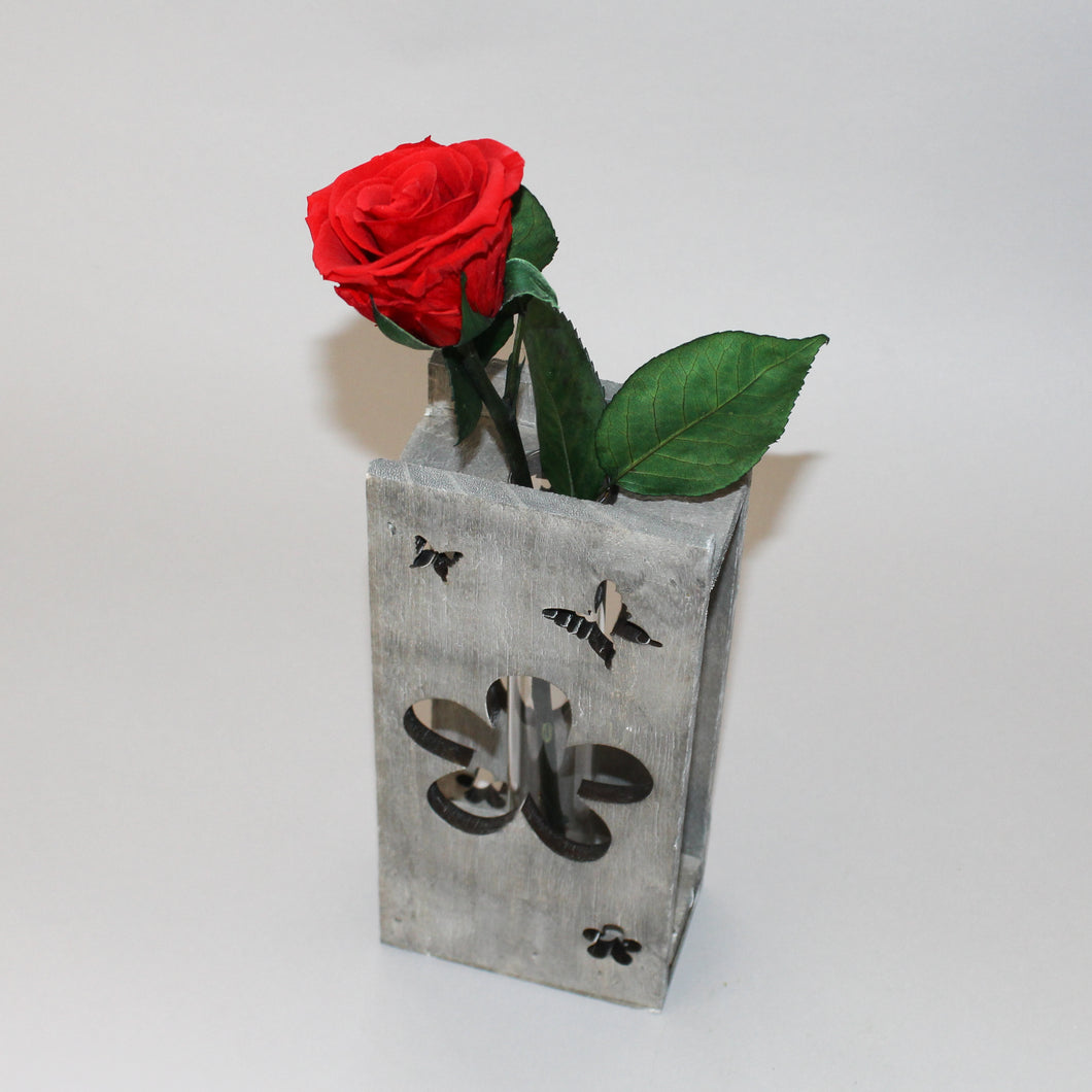 Magic Rose in Wooden Butterfly Housing
