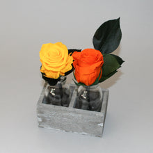 Double Bud Vase Selection