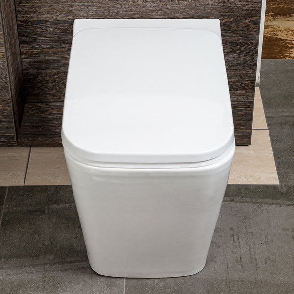 Natalie Back To Wall Toilet Inc Soft Close Seat