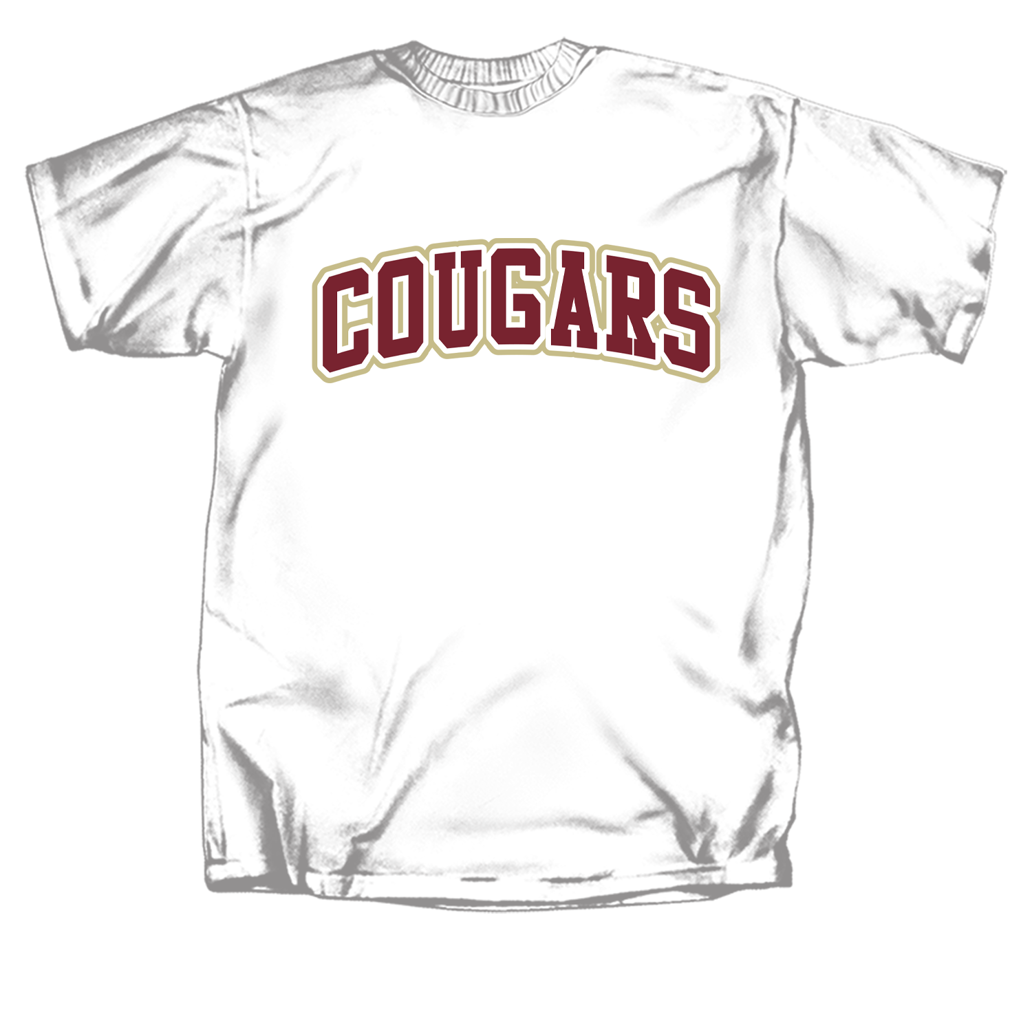 new products 2ea32 bd482 College of Charleston 2 Color Cougar Arch Short Sleeve T-Shirt