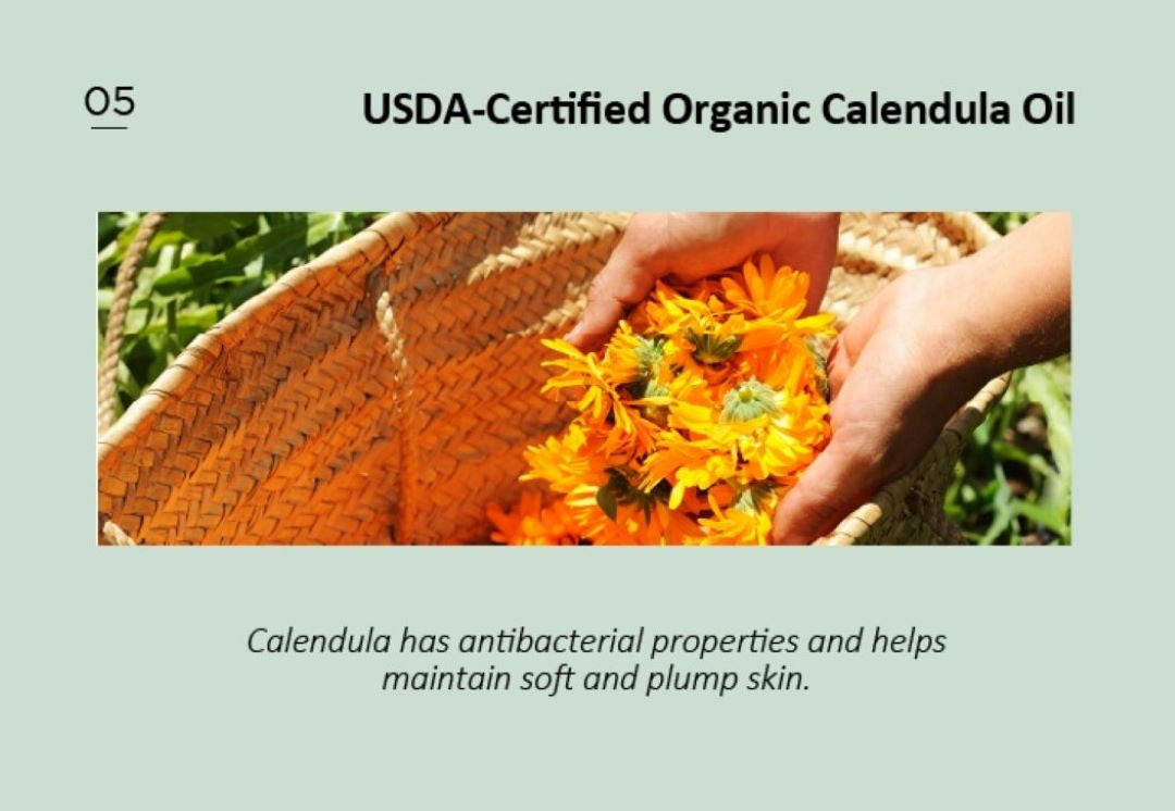Hanul's Calendula farm in USA - Organic Herb Farm in USA with US National Organic Program Certified by USDA (United States Department of Agriculture)