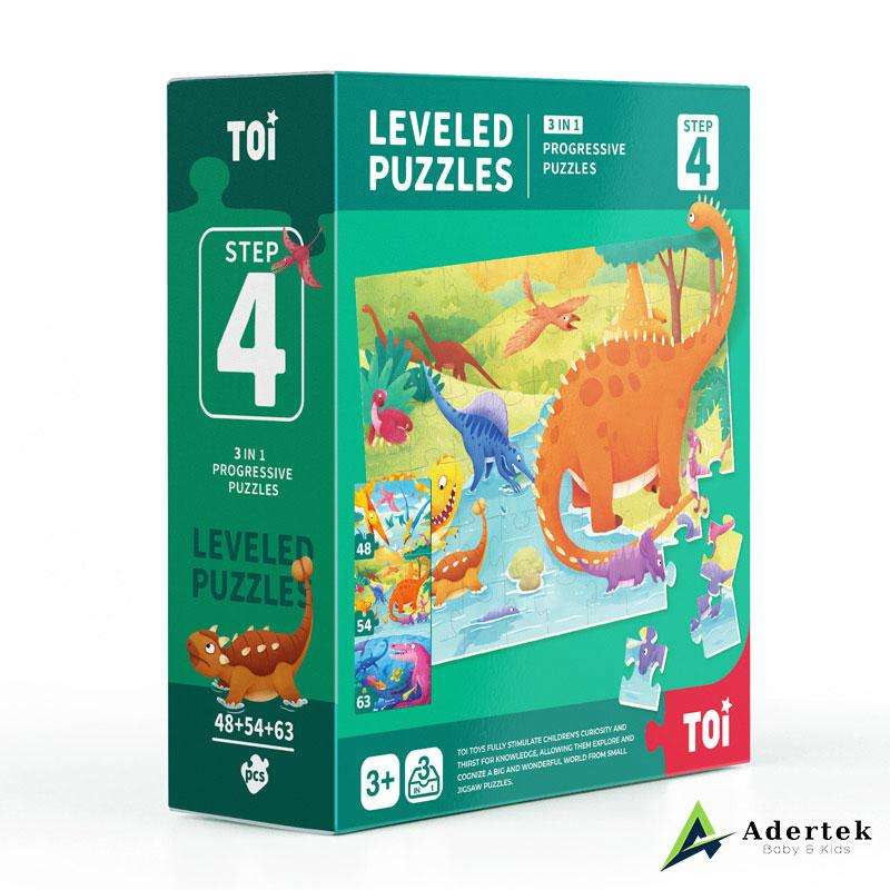 TOI Leveled Puzzle Step 4