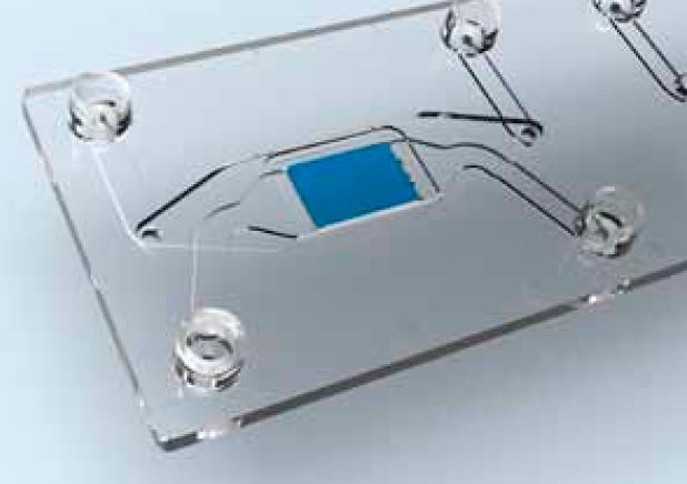 Organ-on-a-Chip - Cross-flow membrane_darwin microfluidics