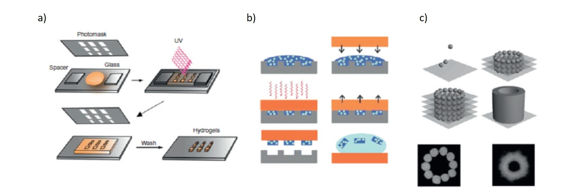Fabrication techniques to produce microscale hydrogels