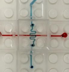 microfluidic chip review