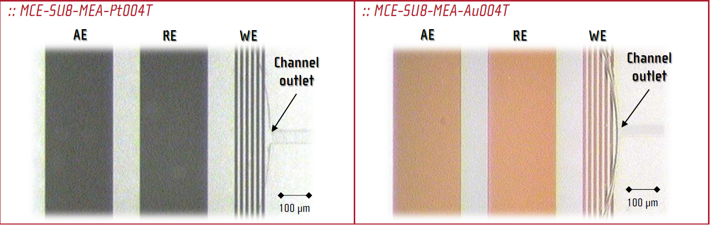 Microfluidic signel channel chips with microelectrodes array structure