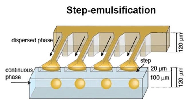 Schematic illustration of a step emulsification channel.