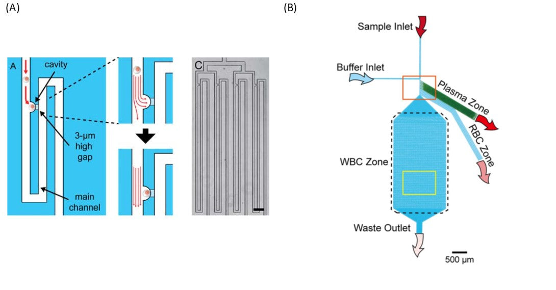 Schematic illustration of the single cell trap with two inserts describing the fluid flow in the trap.