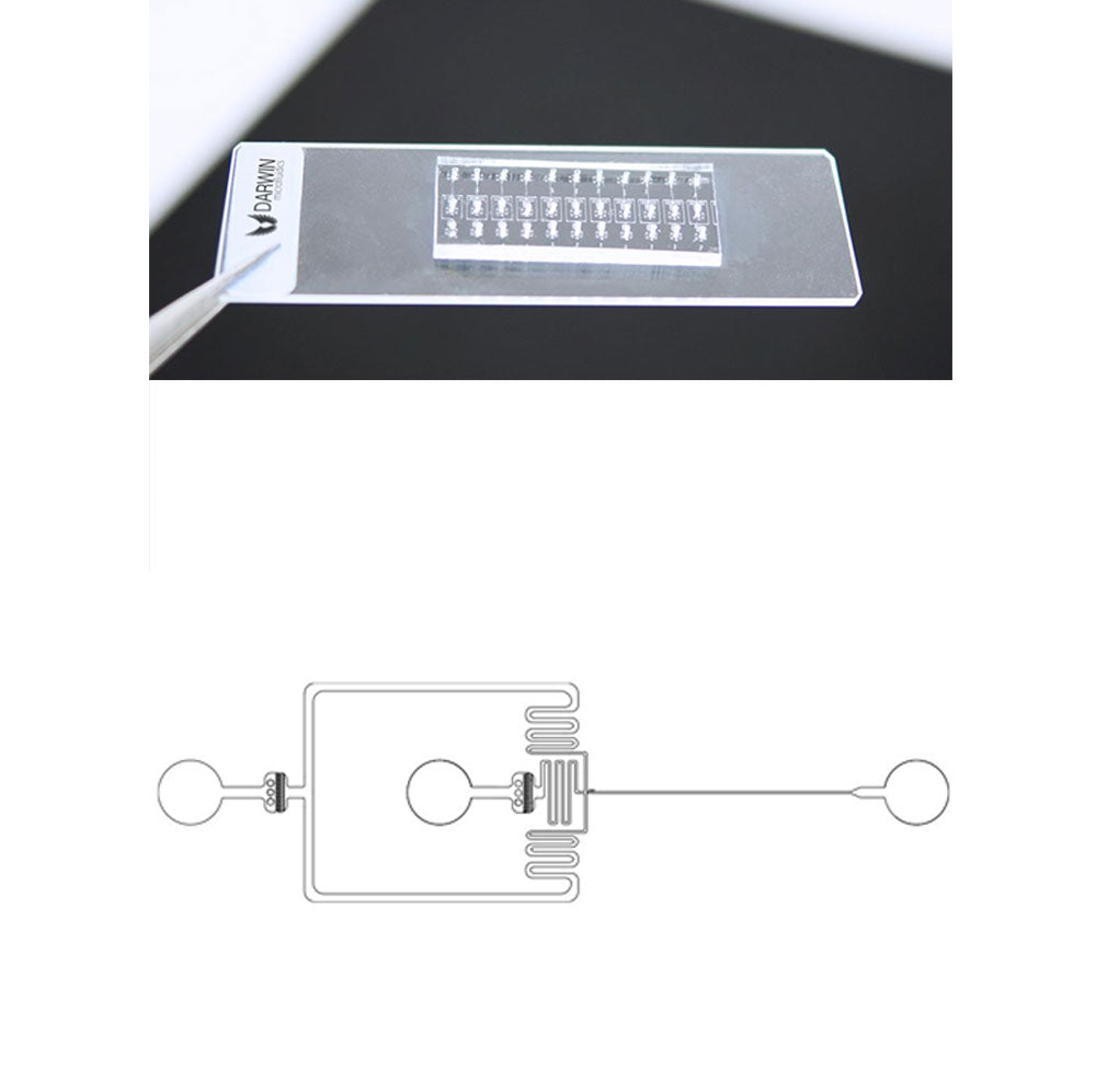 Single Emulsion Droplets - Microfluidic Advanced Pack