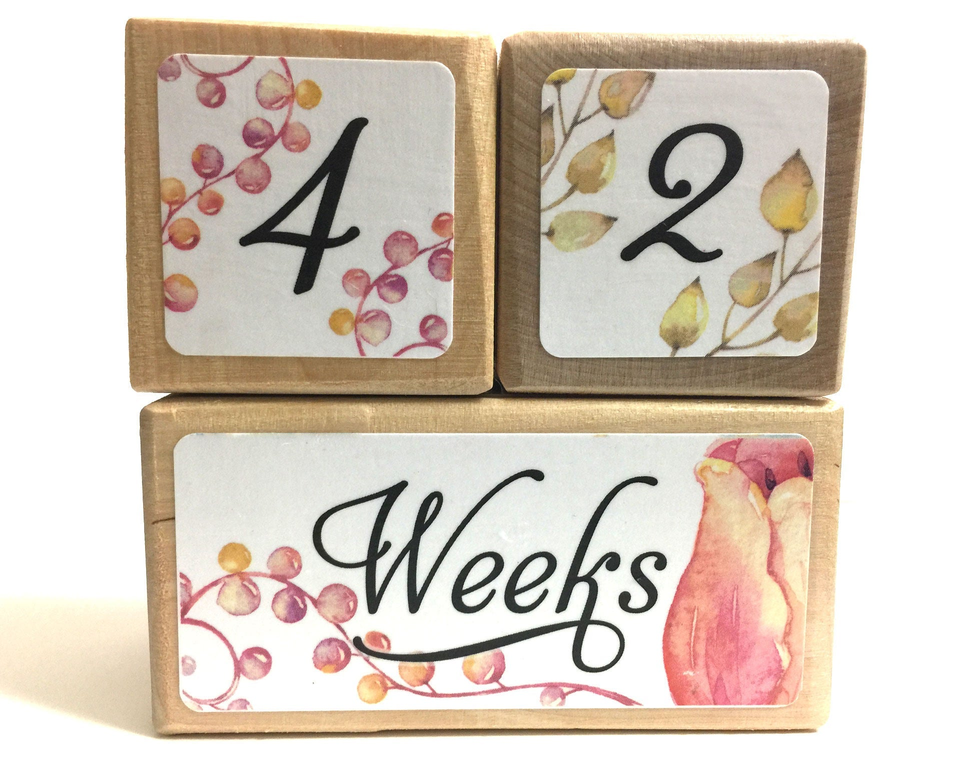 Baby Age Blocks - Baby Milestone Blocks - Baby Monthly Milestone - Monthly Blocks - Baby Girl Milestone - Newborn Photo Prop - Flower Blocks