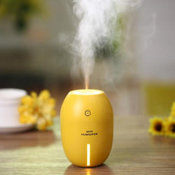 Humidifier Diffuser Essential Oil - Enticing Aroma...a Woman's  World!