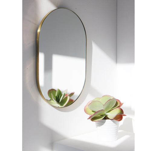 WIDE Capsula Mirror™ - brass frame