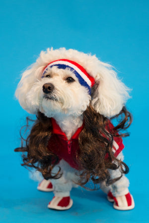 The All American Mutt Mullet